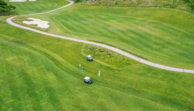 Golf Fields 3D Model